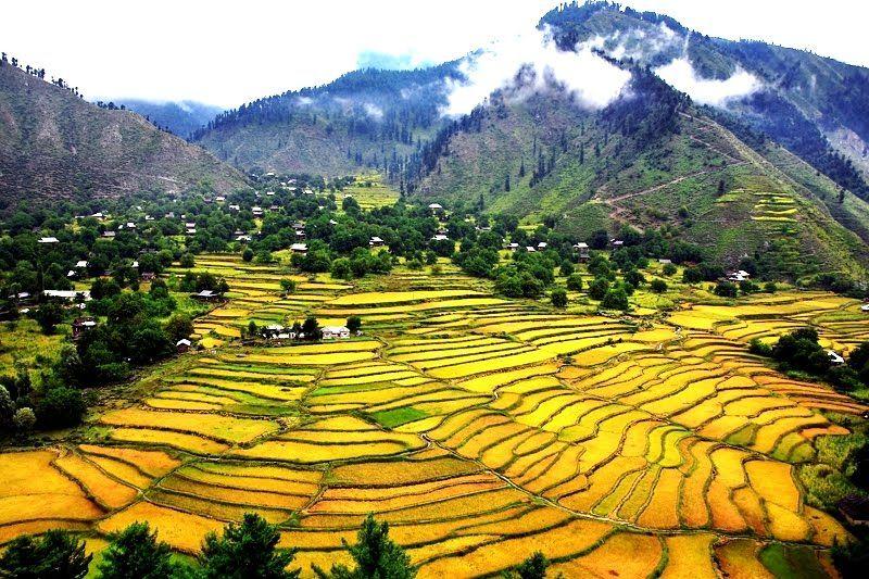 लीपा व्हॅली हा पाकव्याप्त काश्मीरमधला आणखी एक सुंदर भाग आहे. कुपवाडा जिल्ह्यात या भाग पूर्वी यायचा. आता पाकिस्तानने कब्जा केल्यानंतर आझाद कश्मीरचा भाग समजला जातो.