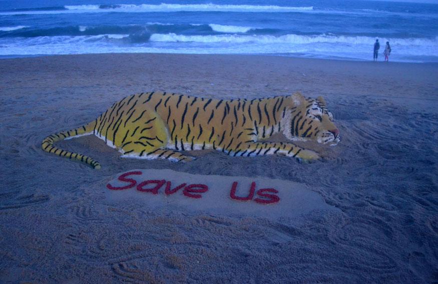 वाळूच्या शिल्पातून 'वाघ वाचवा'हा संदेश