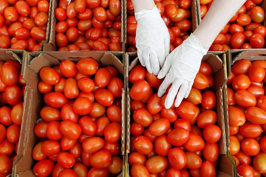 टॉमेटोमुळे शरीरातील रक्त स्वच्छ होतं. त्यामुळे प्रत्येक वयातील महिलेला हे फळ खाल्लंच पाहिजे. यात विटामिन ए, बी, सी आणि के मोठ्या प्रमाणात असतं.