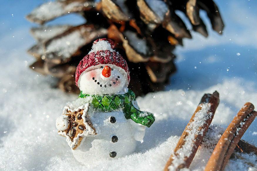 ज्या प्राण्यांना सर्वाधिक थंडी वाजते ते थंडीच्या दिवसांमध्ये हायबरनेशन (सुस्तपणा) अवस्थेत जातात. ते संपूर्ण हिवाळा सुस्त राहून घालवतात. जास्त थंडीच्या दिवसांमध्ये ते पोटात जेवण साठवून झोपतात. (सर्व छायाचित्र- सांकेतिक)