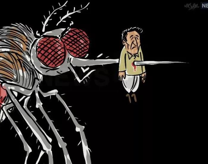 संशोधनात हे सिद्ध झालं आहे की, मच्छर चावल्याने हा आजार होत असला जरी ज्या लोकांमध्ये अॅनिमियाची समस्या असते त्यांच्यात डेंग्यूचे वायरल जलद प्रमाणात पसरतात.