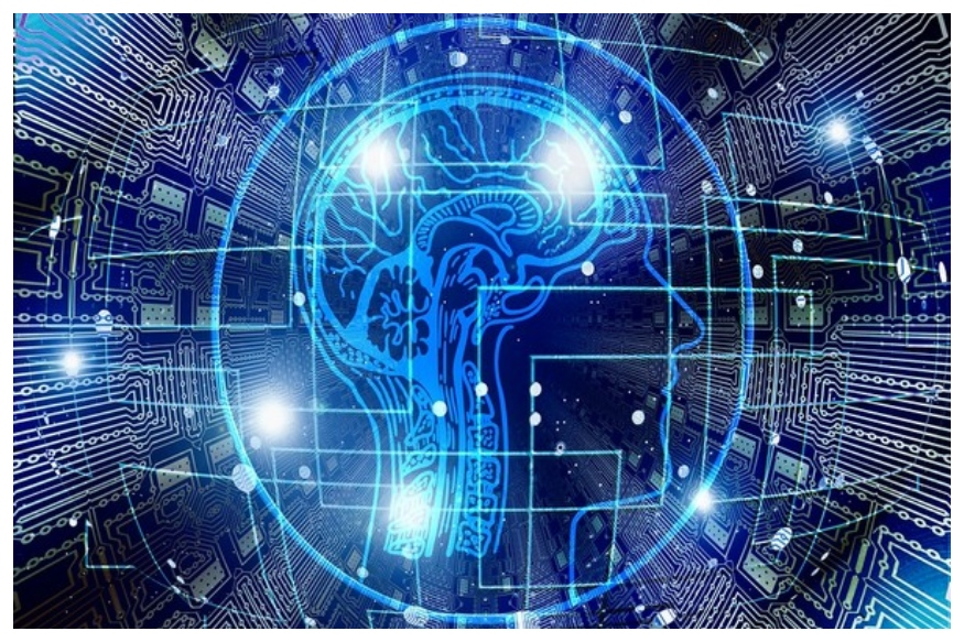 आयुष्यभर एखाद्या व्यक्तीच्या मेंदूचा IQ लेवल एकसारखाच असतो असं म्हटलं जातं. पण वाढत्या वयानुसार विद्यार्थ्यांचा IQ लेवल वाढत जातो हे सिद्ध झालं आहे. नऊ टक्के विद्यार्थी असेही आहेत ज्यांचा IQ 15 गुणांनीही वाढला.