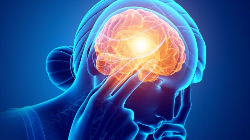 सर्वसामान्यांमध्ये मेंदूबद्दल नेहमीच चुकीचे समज असतात. त्यातही सांगायचं झालं तर बहुतेक लोकांना आजही असं वाटतं की, मेंदूचा 10 टक्के भागच काम करतो. PET आणि fMRI स्कॅन टेस्टच्या मार्फत आज आपण मेंदूबद्दल आतापर्यंत कोणत्या गोष्टी माहिती नव्हत्या ते जाणून घेऊ.