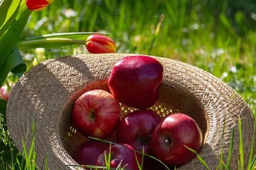 सफरचंद - दररोज एक सफरचंद खा आणि डॉक्टरांपासून दूर राहा असं उगीच सांगितलं जात नाही. सरफरचंद हे फक्त त्वचेसाठीच नाही तर सर्व आरोग्यासाठी उपयुक्त आहे.