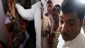 VIDEO : चोर समजून दोघांना मारहाण,भाजप आमदारानेही कानशीलात लगावली