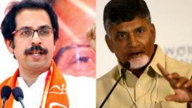 उद्धव ठाकरेंनी नाकारली तेलुगू देसमच्या नेत्यांना भेट, काय आहे कारण?