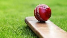 फिक्सिंगच्या या रिपोर्टने क्रिकेट विश्वात खळबळ, चार देशांच्या खेळाडूंची नावं