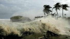 तामिळनाडूच्या किनारपट्टीवर 'गाजा'चं तांडव;  63 हजार लोकांना सुरक्षित स्थळी हलवलं