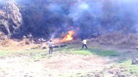 मुख्यमंत्री फडणवीस यांनी लावलेली झाडं वणव्यात जळाली