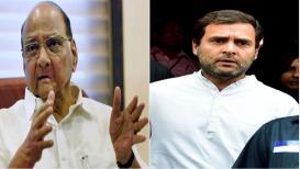 पवारांना अजूनही राहुल गांधी यांचं नेतृत्व मान्य नाही का? - SPECIAL REPORT