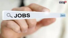 Job Recritment- अकाऊंट आणि टायपिंग जमतं तर इथे मिळेल सरकारी नोकरी, पगार ८० हजारांहून अधिक