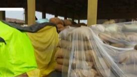 नागपूर जिल्ह्यात अवकाळी पाऊस; बाजार समितीत ठेवलेलं धान्य भिजलं