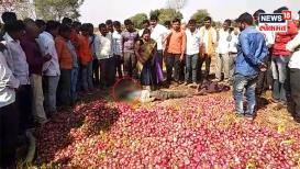 VIDEO : भाव मिळाला नाही, शेतकऱ्याने कांद्याच्या शेतातच केली आत्महत्या