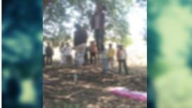 महाविद्यालयीन प्रेम युगुलांची आत्महत्या, झाडाला गळफास लावून संपवलं आयुष्य