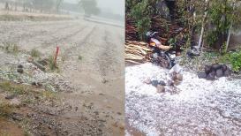 महाराष्ट्रातील या जिल्ह्यांमध्ये 24 तासात मुसळधार पावसाची शक्यता; अवकाळी पाऊस, गारपीटीनं नुकसान