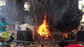 VIDEO : वटपौर्णिमेला महिला करत होत्या पूजा, अचानक झाडाला लागली आग!