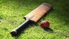 क्रिकेट खेळ नाही, 'या' देशानं नाकारला दर्जा!