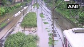 VIDEO: आठवड्याभराच्या विश्रांतीनंतर पुन्हा पाऊस बरसला, सखल भागांत साचलं पाणी