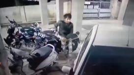 सोसायटीत गाडी लावताय तर सावधान, पाहा या भुरट्या चोराचा VIDEO