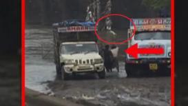 धक्कादायक! नागरिकांना पाणीपुरवठा होणाऱ्या नदीत फेकल्या 2 ट्रकभर मृत कोंबड्या